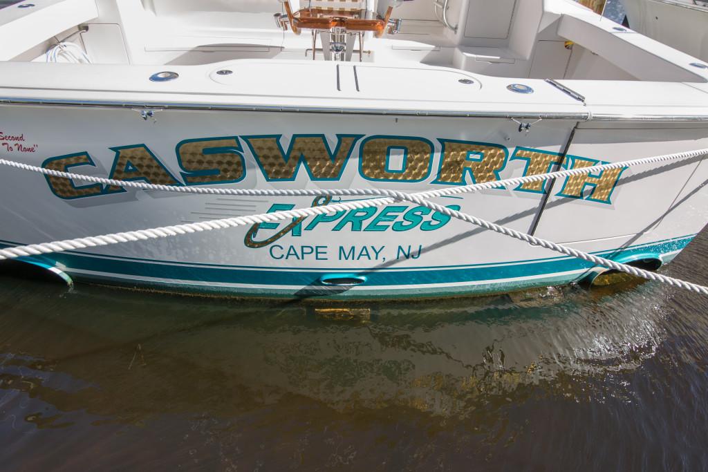 494C8676 1024x683 50 Viking   Casworth Express